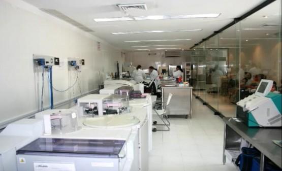 lab2alfaentrada2